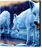 Arctic White Wolves Canvas Print