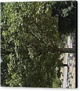 Arlington National Cemetery - 121228 Canvas Print
