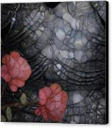Armour And Rose 2 Canvas Print by Jack Zulli