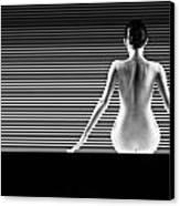 Artistic Nude Canvas Print by Dan Comaniciu