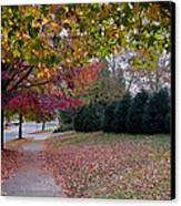 Asheville In The Fall Canvas Print by Walt  Baker