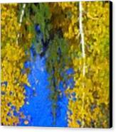 Aspen Reflection Canvas Print by Pat Now