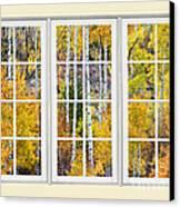 Aspen Tree Magic Cream Picture Window View 3 Canvas Print by James BO  Insogna