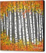 Aspen Trees Canvas Print by Elena  Constantinescu
