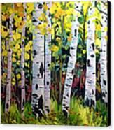 Aspens  Canvas Print by W  Scott Fenton