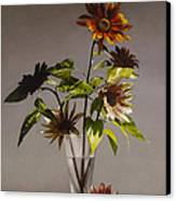 Assorted Sunflowers Canvas Print by Larry Preston