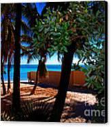 At Dog's Beach In Key West Canvas Print by Susanne Van Hulst
