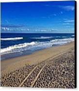 Autumn Carolina Beach Canvas Print by Joan Meyland