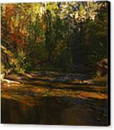 Autumn Colors By The Creek  Canvas Print