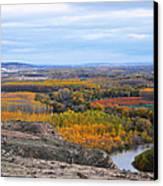 Autumn Colors On The Ebro River Canvas Print