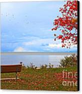 Autumn Canvas Print by Dipali S