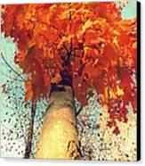 Autumn Fantasy 1 Canvas Print