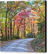Autumn Forest Trail Canvas Print by Bob Jackson