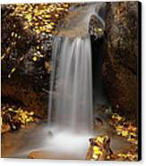 Autumn Gold And Waterfall Canvas Print by Leland D Howard