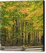 Autumn In Door County Canvas Print by Adam Romanowicz