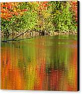 Autumn Iridescence Canvas Print