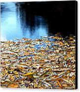 Autumn Lake Canvas Print
