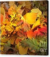 Autumn Masquerade Canvas Print by Martin Howard