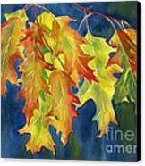Autumn Oak Leaves  On Dark Blue Background Canvas Print by Sharon Freeman