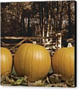 Autumn Pumpkins Canvas Print by Amanda Elwell