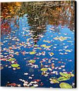 Autumn Reflections Canvas Print by Bill Wakeley