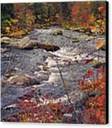 Autumn River Canvas Print by Joann Vitali