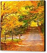 Autumn Road Home Canvas Print by Terri Gostola