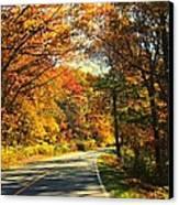 Autumn Splendor Canvas Print by Candice Trimble