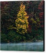Autumn Splendor Canvas Print by Shane Holsclaw