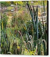 Autumn Swamp Canvas Print by Bill Wakeley