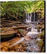 Autumn Waterfall Canvas Print by Adrian Evans