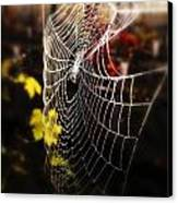 Autumn Web Canvas Print