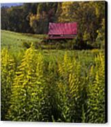 Autumn Wildflowers Canvas Print by Debra and Dave Vanderlaan