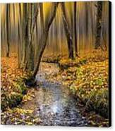 Autumn Woodland Canvas Print by Ian Hufton