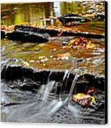 Autumnal Serenity Canvas Print by Frozen in Time Fine Art Photography