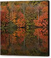 Autumns Design Canvas Print by Karol Livote