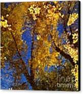 Autumns Reflections Canvas Print by Steven Milner