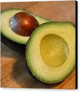 Avocado Canvas Print by Michelle Calkins