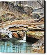 Away From Cover - Bobcat Canvas Print by Phillip  Powell