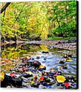 Awesome Autumn  Canvas Print by Frozen in Time Fine Art Photography