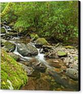 Kerry River Ireland Canvas Print by Pro Shutterblade