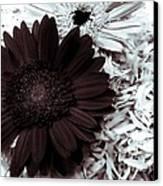 B/w Flower Canvas Print by Ankeeta Bansal