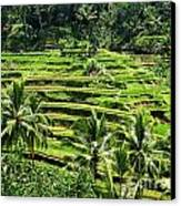 Balinese Dream Canvas Print