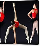 Ballet Dancer Canvas Print by Stephen Norris