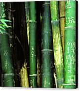Bamboo Graffiti Pano - Sichuan Province Canvas Print by Anna Lisa Yoder