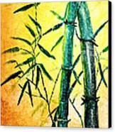 Bamboo Magic Canvas Print by Nirdesha Munasinghe