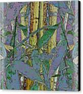 Bamboo Study 9 Canvas Print by Tim Allen