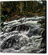 Baranof River Canvas Print