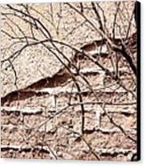 Bare Tree Adobe Wall Canvas Print by Joe Kozlowski