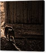 Barn Cat Canvas Print by Theresa Tahara